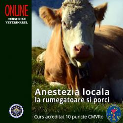 """Curs """"Anestezia locala la..."""